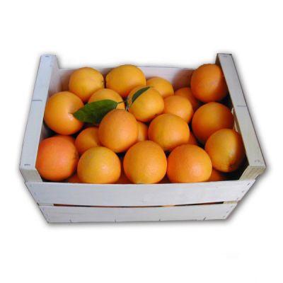 10kg de naranjas de Valencia